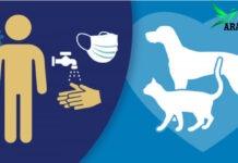 Coronavirus and Pets